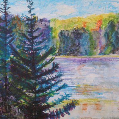Conifers on the Petawawa River